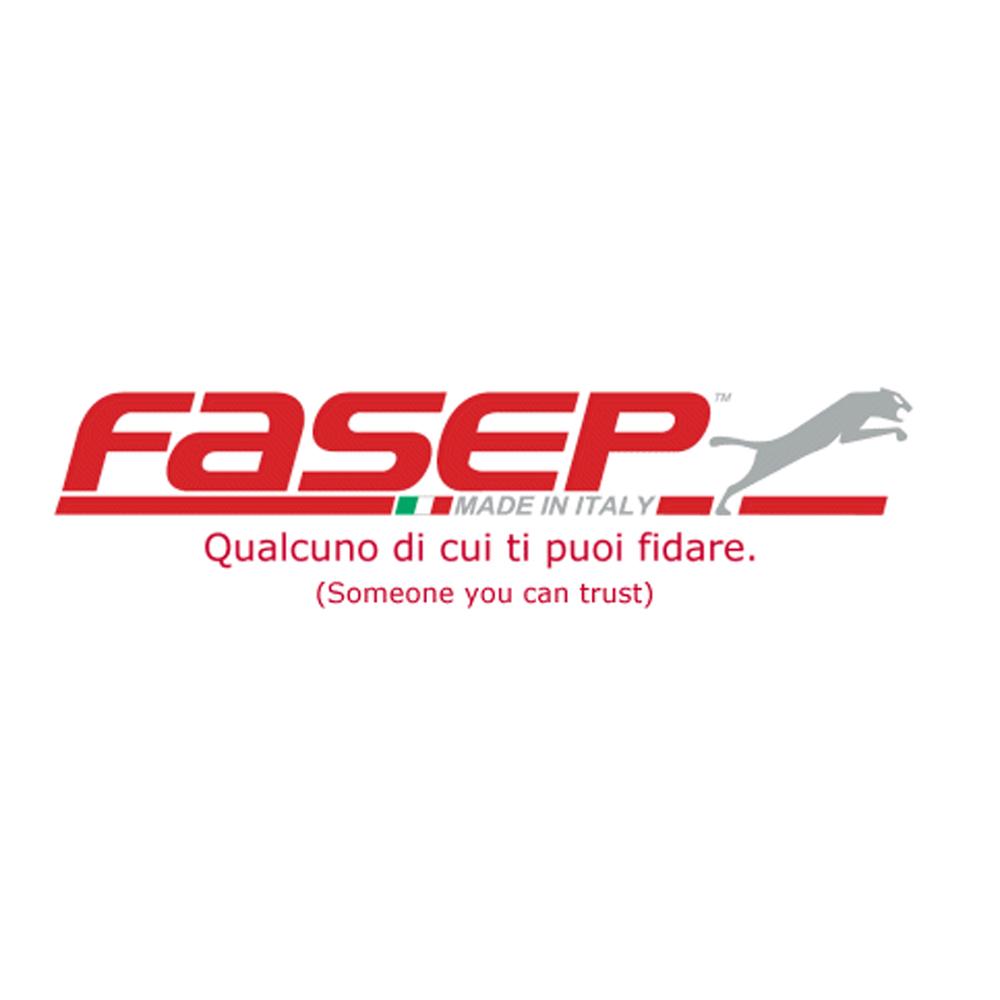 LogoFasep